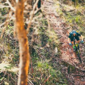 MTB Mt Beauty Mountain Bike Park Ride High Country