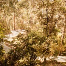 7 Peaks Ride Training Tips