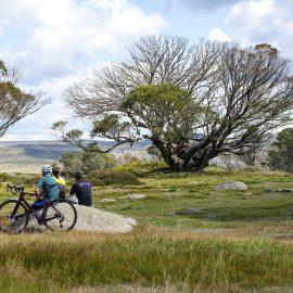 Cope Hut return gravel ride falls creek