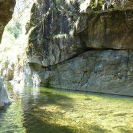 Mount Beauty Gorge Walk