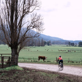 Cycling on gravel roads in the Upper Murray