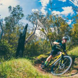 Ride High Country mountain bike trail Bananarama in Mt Beauty
