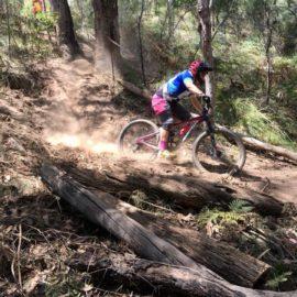 Ride High Country mountain bike trail Crikey Bernie in Mt Beauty