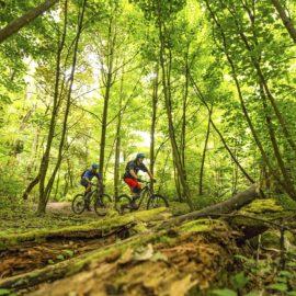 Ride High Country mountain bike trail Australian Alpine Epic at Mt Buller