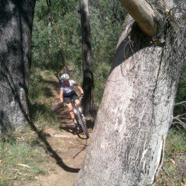 Ride High Country mountain bike trail Ooh La La in Mt Beauty