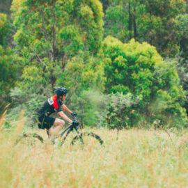 Ride High Country mountain bike trail West Kiewa Fire Trail in Mt Beauty