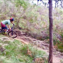 Ride High Country mountain bike trail Wild Side in Mt Beauty