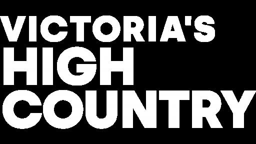 VHC master logo png white no border