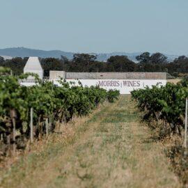 Morris Wines of Rutherglen