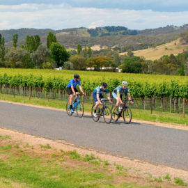 Road cycling in the King Valley